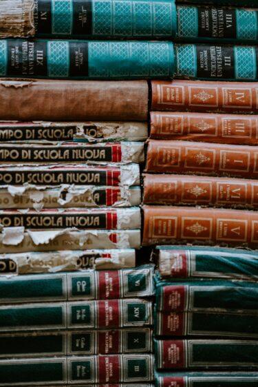 読書のススメ【少人数のスペインがインカ帝国を滅ぼせた理由は本にあった】