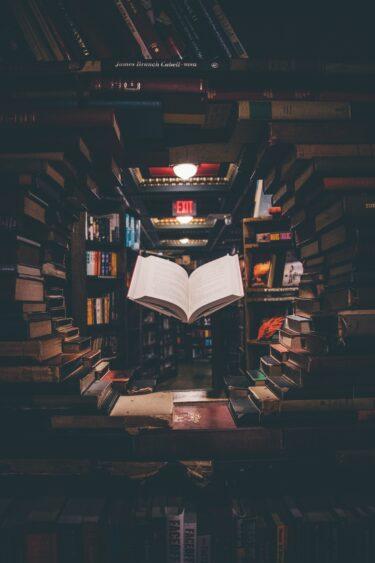 忙しい人にこそ読書革命が必要!【1日30分】